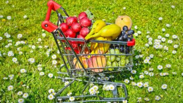 Green Shopping
