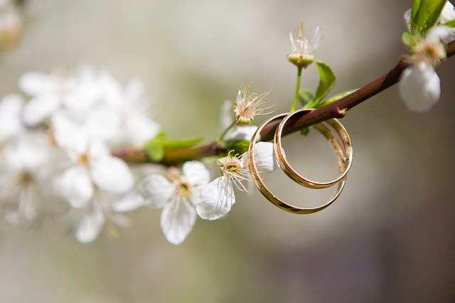 Eine Hochzeit kann umweltfreundlich gefeiert werden
